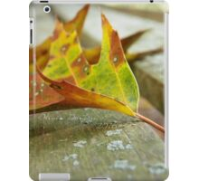 Fallen Leaf on the Bench iPad Case/Skin