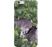 COON CITY iPhone Case/Skin