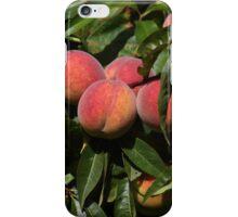 Vineyard Peaches iPhone Case/Skin
