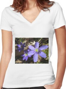 Wild and Blue Women's Fitted V-Neck T-Shirt