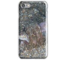 Sandperch in a Bottle iPhone Case/Skin
