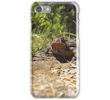 Disapproval Comes in All Sizes iPhone Case/Skin