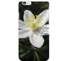 White Wood Anemones iPhone Case/Skin