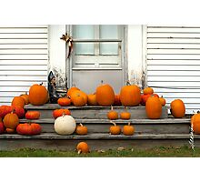 Pumpkin Harvest Photographic Print
