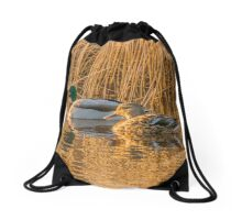 Mallard Pair Bathed in Golden Sunlight Drawstring Bag
