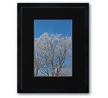 Shimmering Spring Crystals Framed Print