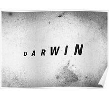 Darwin's Evolution Poster
