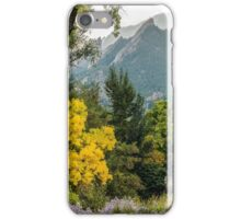 Flatirons Fall Silhoette iPhone Case/Skin