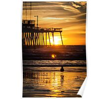 Pismo Beach Sunset with seagull Poster