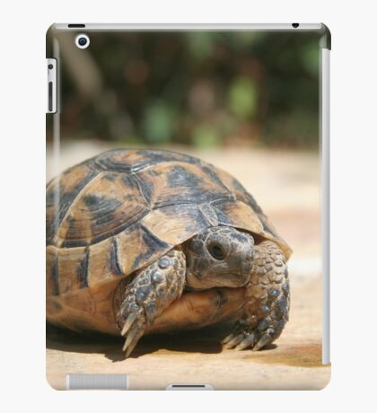 Young Tortoise Emerging From Its Shell iPad Case/Skin
