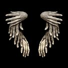 Hands Or Wings by Antonio Arcos aka fotonstudio