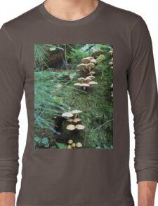 Where Fairies Play Long Sleeve T-Shirt