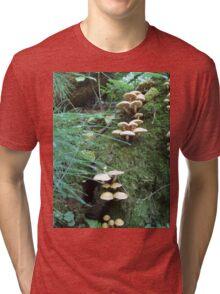 Where Fairies Play Tri-blend T-Shirt