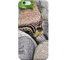 Eastern Garter Snake iPhone Case/Skin