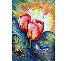 Tulips and butterfly Photographic Print