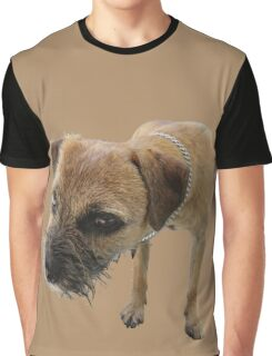Young female border terrier Graphic T-Shirt