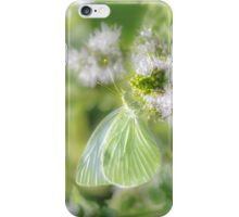 White Cabbage Butterfly iPhone Case/Skin