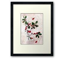Feative Red Berries Framed Print
