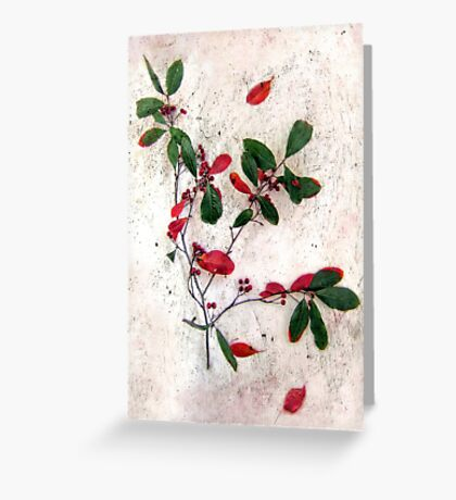Feative Red Berries Greeting Card