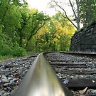 The Tracks At The Turn by Geno Rugh