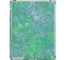 Pond iPad Case/Skin