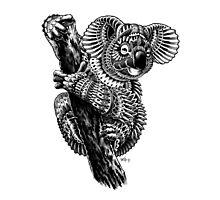 Ornate Koala Photographic Print