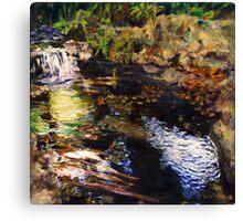 Fern Dell Creek Canvas Print
