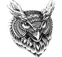 Ornate Owl Head by BioWorkZ