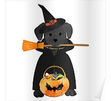Halloween Witch Preppy Black Lab Poster