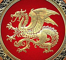 Icelandic Dragon (Gold) by Captain7