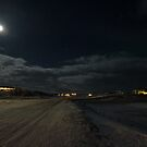 Myvatn in Moonlight by Sue Robinson