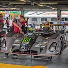 #16 Matt McMurry IMSA Prototype Lites by Paul Danger Kile