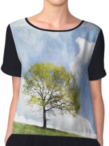 Tree in Spring Chiffon Top