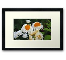 A touch of Vincent Framed Print