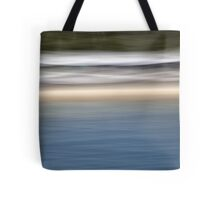 83 Winter Light @ Balmoral Tote Bag