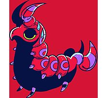 Bright Scolipede Photographic Print