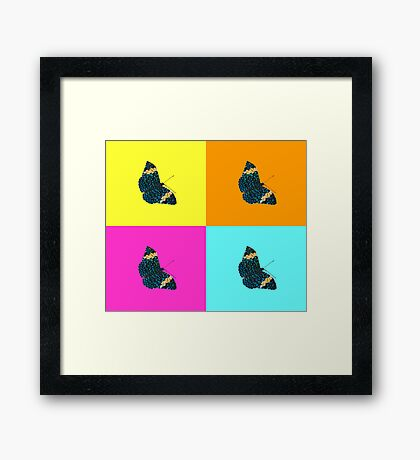 Butterfly on colours (1) Framed Print