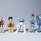 The droids you are looking for by StewNor
