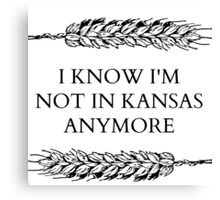 I KNOW I'M NOT IN KANSAS Canvas Print
