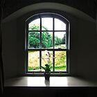 Cottage Window by Shulie1