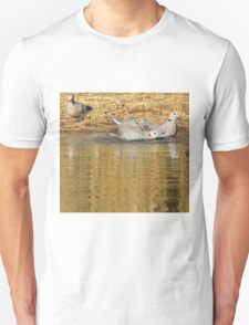 Cape Turtle Dove - Summer Swim - African Wild Birds Unisex T-Shirt