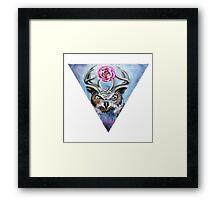 D'Owl Framed Print