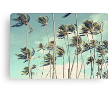 Hawaii Palm Trees In The Wind Canvas Print