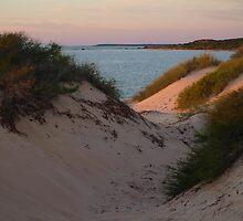 Monkey Mia Sunrise over the Sand Dunes  by Virginia  McGowan
