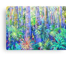 Rainforest Tamborine Mountain #1 Canvas Print