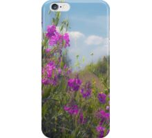 Roadside Delight iPhone Case/Skin