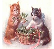 Cute vintage cats,playing with flowers,reproduction,old,victorian era, Photographic Print