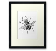 Dotwork Flying Beetle Illustration  Framed Print
