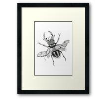 Dotwork Flying Beetle Illustration  Framed Print