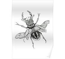 Dotwork Flying Beetle Illustration  Poster
